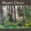 Aham Devo Single