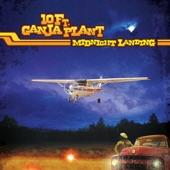 10 Ft. Ganja Plant - Midnight Landing