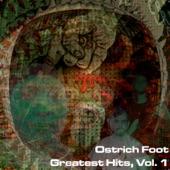 Ostrich Foot - Job Fair