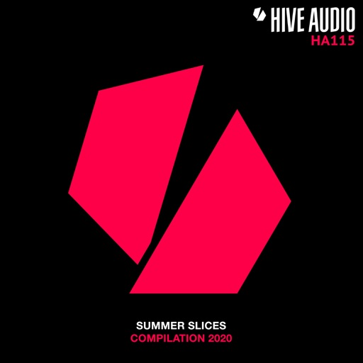 Summer Slices 2020 by Various Artists