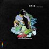 GRiZ - A New Day (feat. Matisyahu) artwork