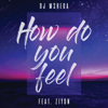 DJ Mshega - How Do You Feel (feat. Ziyon) artwork