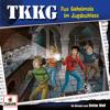 TKKG - Folge 216: Das Geheimnis im Jagdschloss Grafik