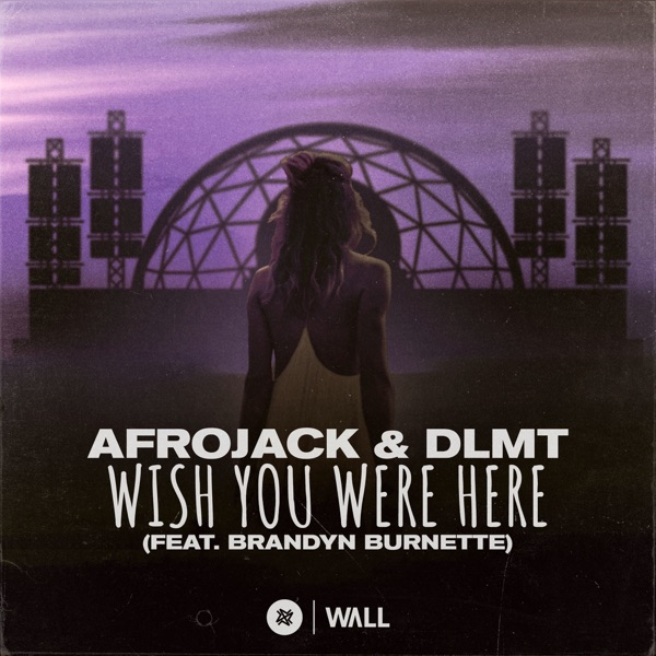 Afrojack & DLMT – Wish You Were Here (feat. Brandyn Burnette) – Single [iTunes Plus AAC M4A] Download Free
