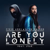 Are You Lonely feat ISÁK - Steve Aoki & Alan Walker mp3