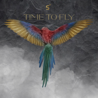Time to Fly - Single