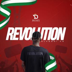 Blaq-Boi ks - Revolution