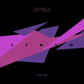 Сумую (Andi Vax Remix)