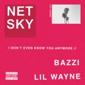 Belgium Top 10 Dance Songs - I Don't Even Know You Anymore (feat. Bazzi & Lil Wayne) - Netsky