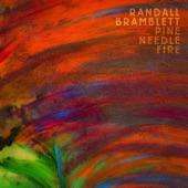 Randall Bramblett - Some Poor Soul