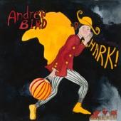 Andrew  Bird - Glad