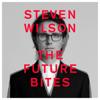 Steven Wilson - EMINENT SLEAZE artwork