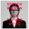 Steven Wilson - EMINENT SLEAZE bild