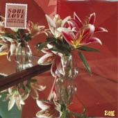 James Reid - Soul Love