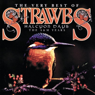 The Very Best of Strawbs - Halcyon Days - The Strawbs