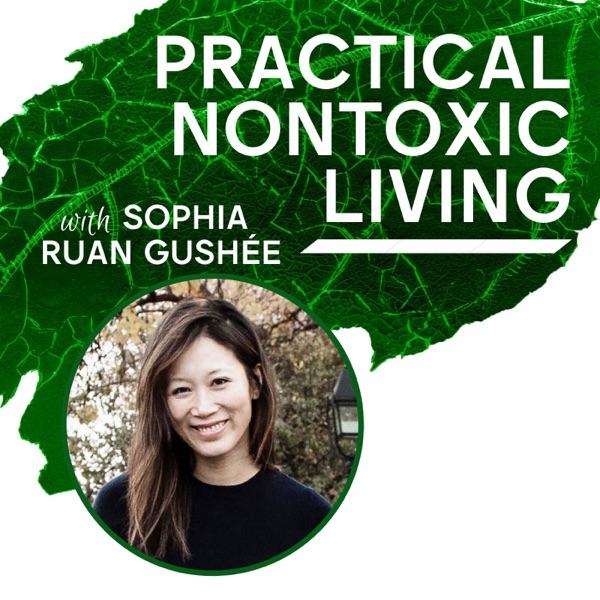 Practical Nontoxic Living