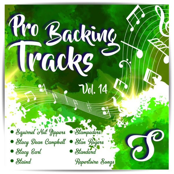 Pro Backing Tracks, Vol.14