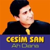 O Zaman artwork