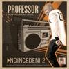 Ndincedeni 2 (feat. Dalom Kids, MSK & Mr Luu) - Single