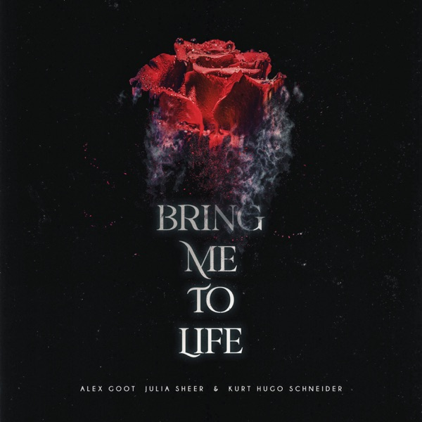 Bring Me To Life (Acoustic) - Single