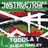 Instruction (Gallong Gyal) [feat. Alicai Harley]