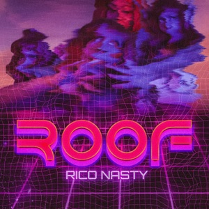 Rico Nasty - Roof