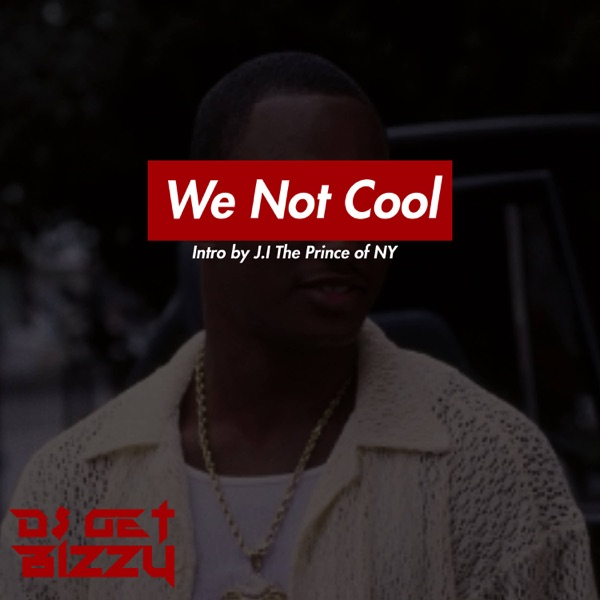 We Not Cool (feat. J.I the Prince of N.Y) - Single