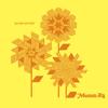 Mumm-Ra - Summer bild