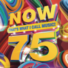 Various Artists - NOW That's What I Call Music, Vol. 75  artwork
