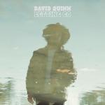 David Quinn - Letting Go
