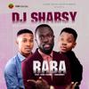 DJ Shabsy - Raba (feat. Kiss Daniel & Sugarboy) artwork