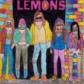 Hello, We're the Lemons!