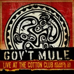 Gov't Mule - Painted Silver Light