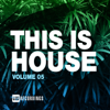 Various Artists - This Is House, Vol. 05 artwork