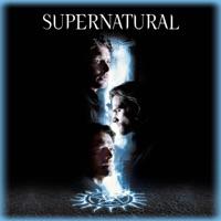 Télécharger Supernatural, Saison 14 (VF) Episode 18