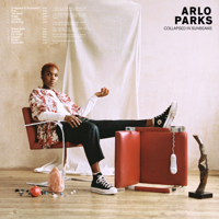 Download Arlo Parks - Collapsed In Sunbeams Gratis, download lagu terbaru