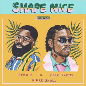 Afro B, Vybz Kartel & Dre Skull - Shape Nice