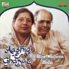 Aashiq E Ghazal Vol 2