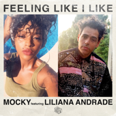 [Download] Feeling Like I Like (feat. Liliana Andrade) MP3