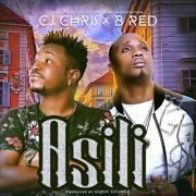 Asili (feat. B Red) - Cj Chris