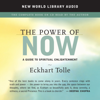 Eckhart Tolle - The Power of Now: A Guide to Spiritual Enlightenment  artwork
