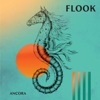 Ancora by Flook on Apple Music