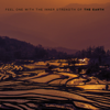 Feel One with the Inner Strength of the Earth - Various Artists
