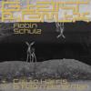 Calvin Harris, Rag'n'Bone Man - Giant (Robin Schulz Extended Remix) Grafik