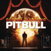 Pitbull - Feel This Moment (feat. Christina Aguilera) artwork