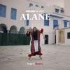 Alane Yves V Remix Single