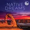 Native Dreams A Native American Musical Tapestry