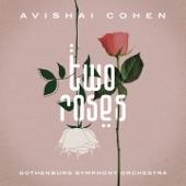 Avishai Cohen - Puncha Puncha