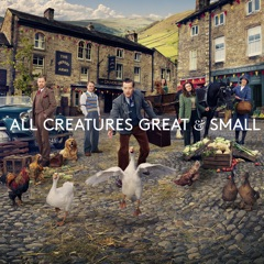 All Creatures Great and Small, Series 2
