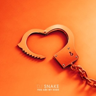 DJ Snake – You Are My High – Single [iTunes Plus AAC M4A]
